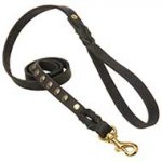 Studded Leather Dog Leash For Walking And Tracking