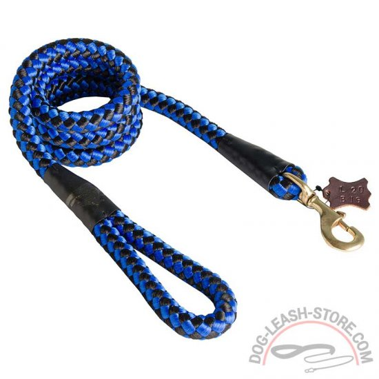 Simple Nylon Cord Dog Leash