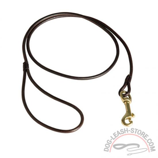 Special Handcrafted Round Leather Dog Leash