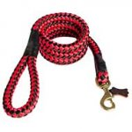 Cord Nylon Dog Leash for Any Weather Activities