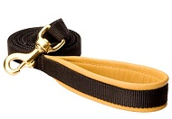 Padded Handle Dog Lead (Leash) for walking dogs