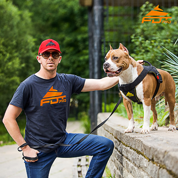 Men T-shirt of Fine Quality Cotton with FDT Professional Logo for Dog Training