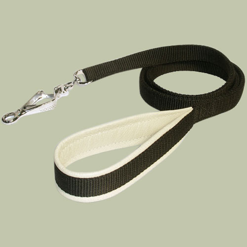 SIMILAR Lupine Nylon Dog Leash 4-Footx3/4inch for all dogs