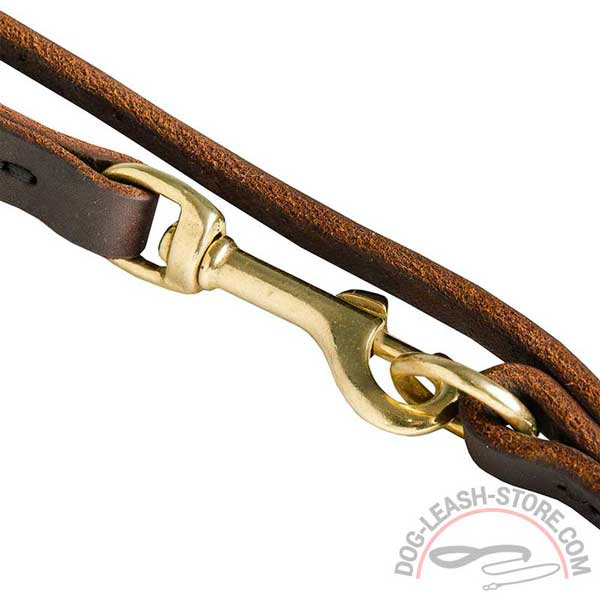 Snap Brass Hook of Dog Leash
