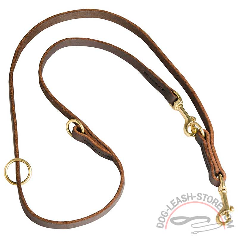 harness leather dog coupler