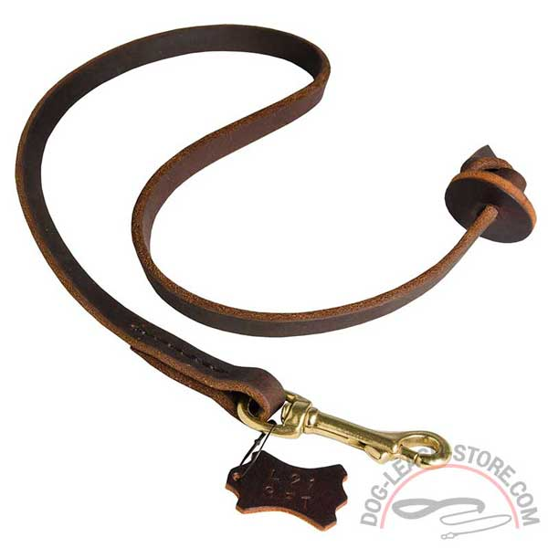 Leather Dog Lead Best Control