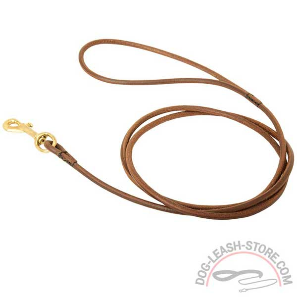 Lightweight Leather Dog Leash for Shows
