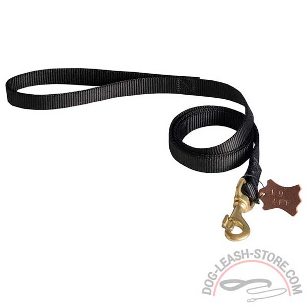 Nylon Dog Lead with Brass Snap Hook