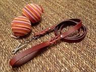 leather designer dog leash