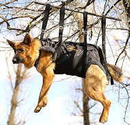 Tactical Insertion Harness - Crucial harness in rapid ascending